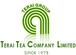 Terai Tea Company Ltd, Tea Estate North Bengal, terai group  Siliguri